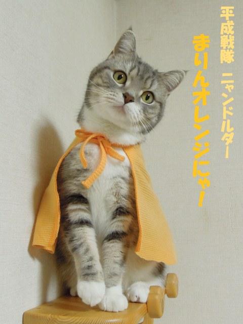20130323まりんオレンジ1