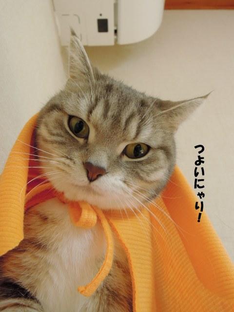 20130324まりんオレンジ2