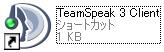 TS_ss11.jpg