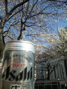 お花見ビール