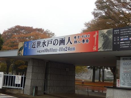 DSCN3988.jpg