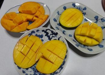 マンゴー3種