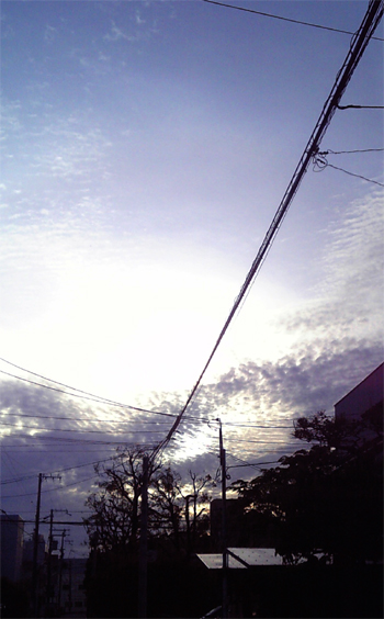 syame8.jpg