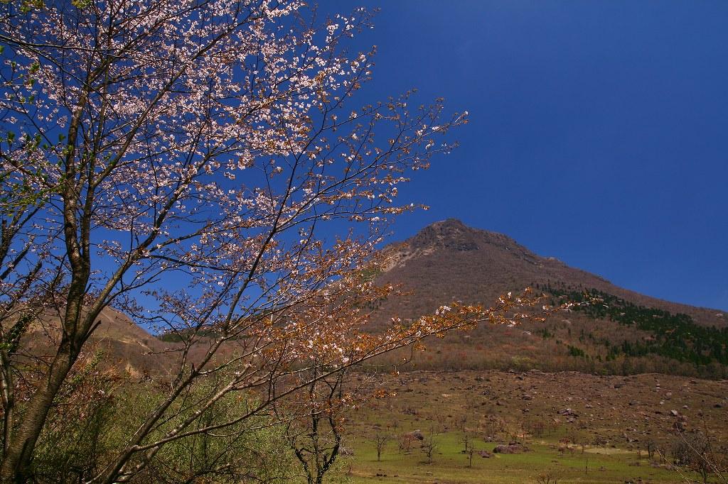 s-由布岳志高湖20100425 121