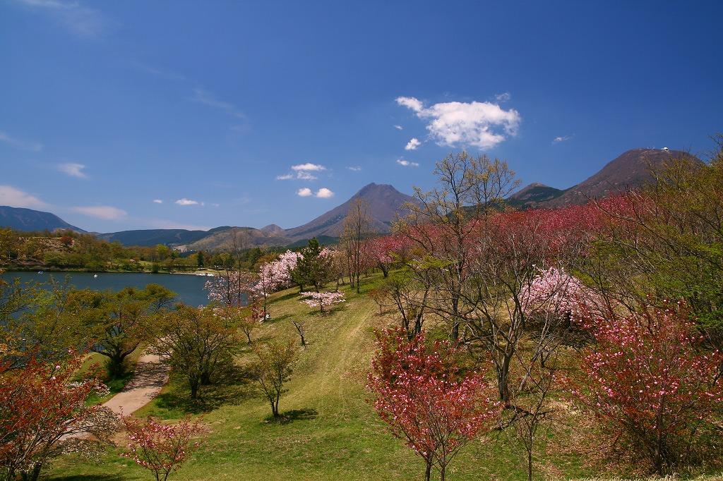 s-志高湖20100425 026