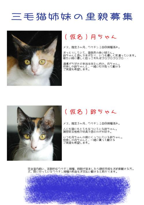 募集ポスター03-(2)