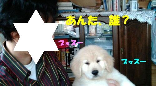 ミユキ携帯 039