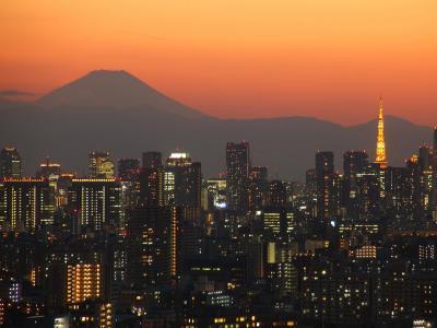 edogawa-34l_20110508140546.jpg