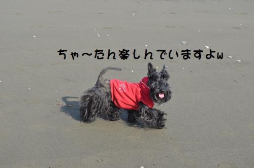 a_20130118220443.jpg