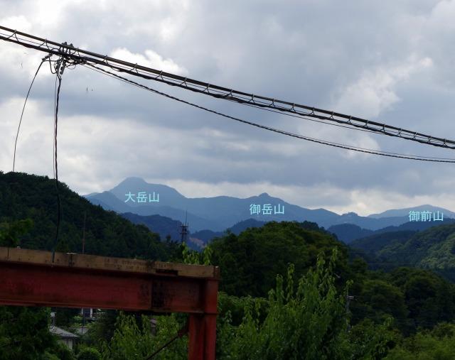 ☆IMGP9505