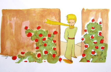 薔薇と王子さま