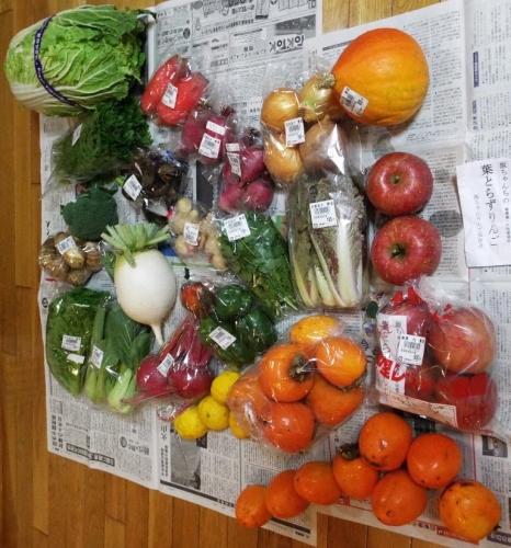 どっさり野菜
