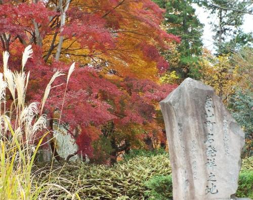 5嵐山渓谷紅葉