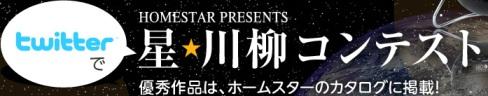星川柳コンテスト
