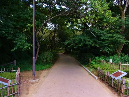佐倉城本丸へ