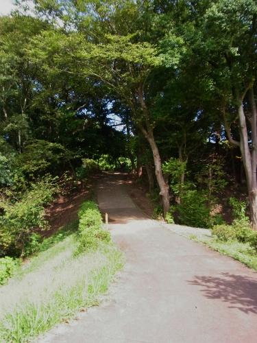 臼井城土橋