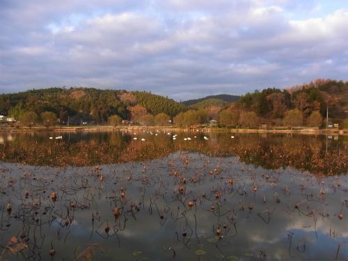 湖水城の湖水