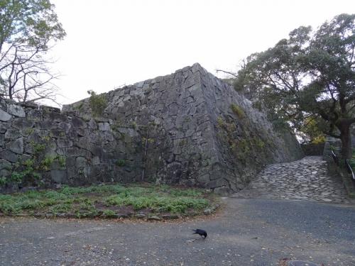 1福岡城とカラス (1200x900)