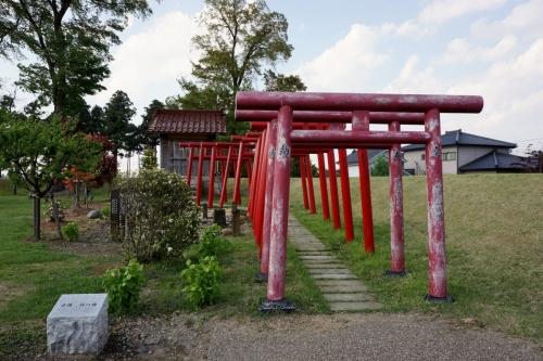 4丸岡城 (1200x800)