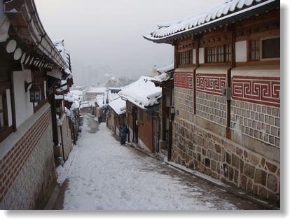 20101227kitamura2.jpg