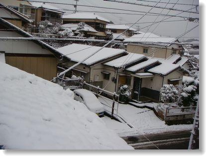 20101231yuki2.jpg