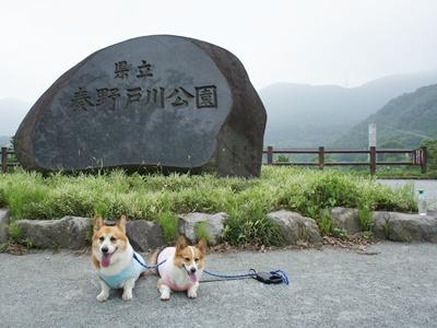 秦野戸川公園【23.6.26】 NO1