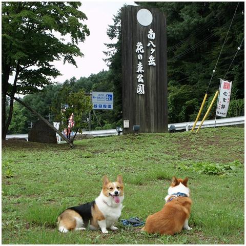 3連休ヽ(*⌒▽⌒*)ノ 【23.8.21-23】 1日目&2日目 -その①- NO2