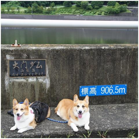 3連休ヽ(*⌒▽⌒*)ノ 【23.8.21-23】 1日目&2日目 -その①- NO5