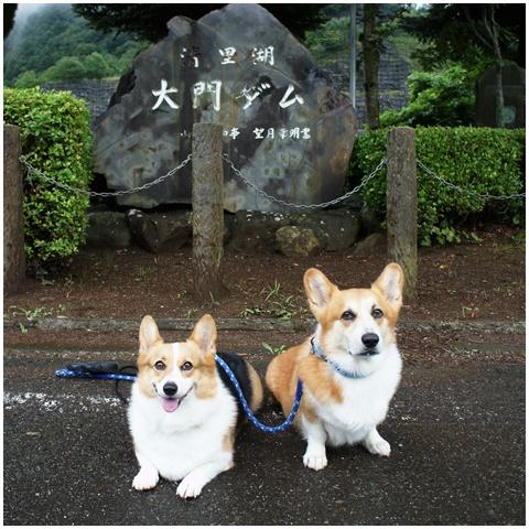 3連休ヽ(*⌒▽⌒*)ノ 【23.8.21-23】 1日目&2日目 -その①- NO7