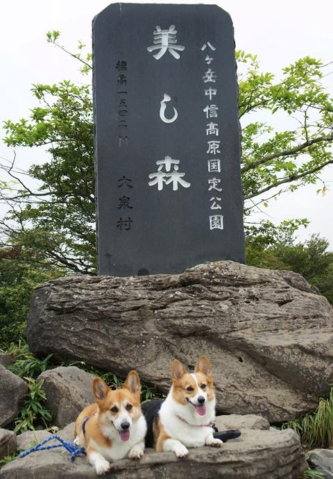 3連休ヽ(*⌒▽⌒*)ノ 【23.8.21-23】 1日目&2日目 -その④- NO3