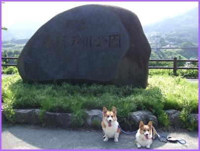 野戸川公園&みずなし川緑地 【22.6.24】 NO1