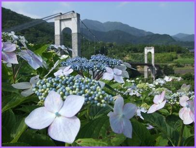 野戸川公園&みずなし川緑地 【22.6.24】 NO2
