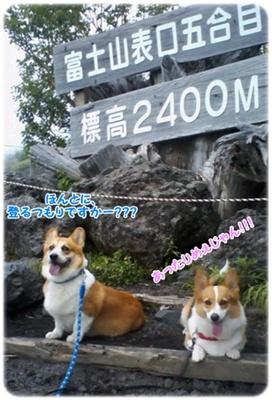 ~涼を求めて~ 富士山{五合目&グルリとドライブ} 【22.7.20】 NO2