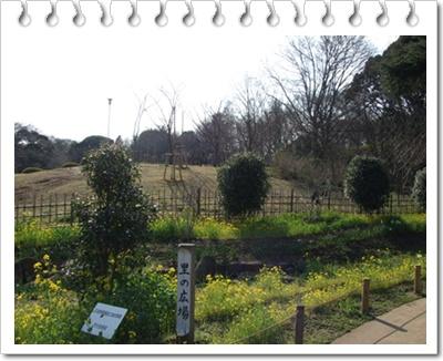 県立 三ッ池公園【22.3.17】NO6