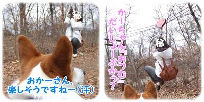 山梨県森林公園 金川の森【22.3.18】NO11