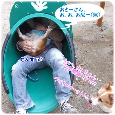 山梨県森林公園 金川の森【22.3.18】NO12