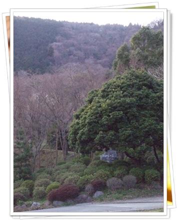 県立 21世紀の森【22.3.22】NO14