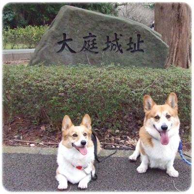 大庭城址&引地川親水公園【22.3.23】 NO1