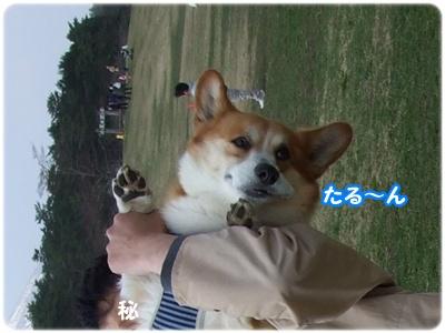 黄金週間 ③ 【22.5.2編】 NO10