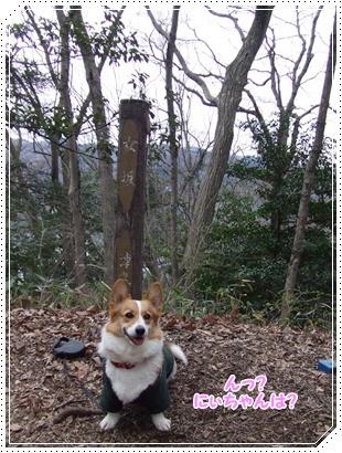 県立 津久井湖城山公園【22.3.29】 NO10