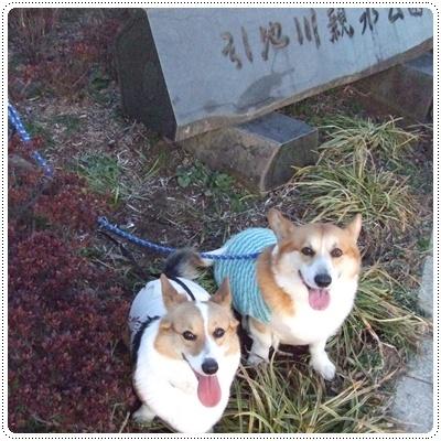 県立茅ヶ崎里山公園&引地川親水公園【22.2.7】NO13