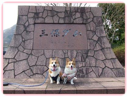 お花見は、恒例のダム広場でヽ(*⌒▽⌒*)ノ【22.4.11】 NO11