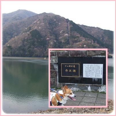 お花見は、恒例のダム広場でヽ(*⌒▽⌒*)ノ【22.4.11】 NO13