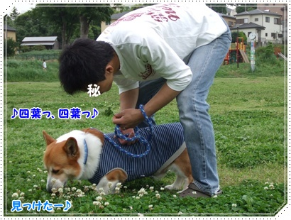 -近所公園-【22.5.26】 NO4