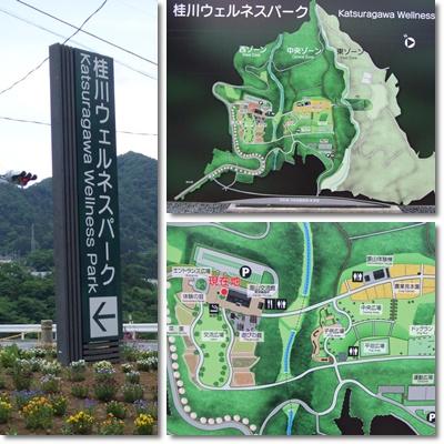 桂川ウェルネスパーク【22.6.3】 NO1