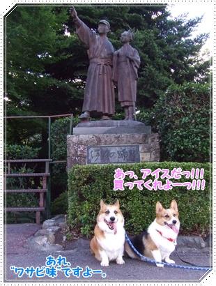~涼を求めて~ 中伊豆【22.8.4】 NO10