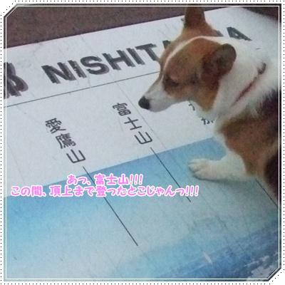 ~涼を求めて~ 中伊豆【22.8.4】 NO13