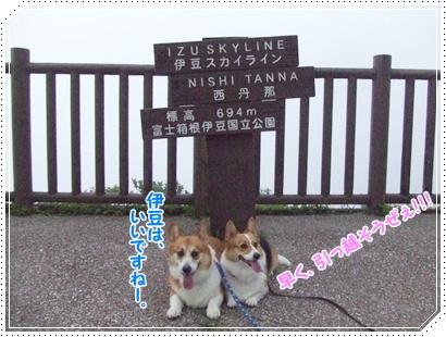 ~涼を求めて~ 中伊豆【22.8.4】 NO14