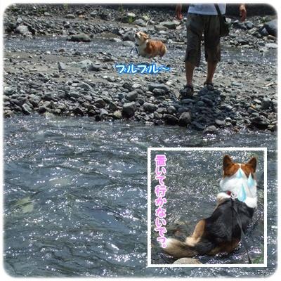 ウエストリバーオートキャンプ場 : 2日目【22.8.23】 NO17