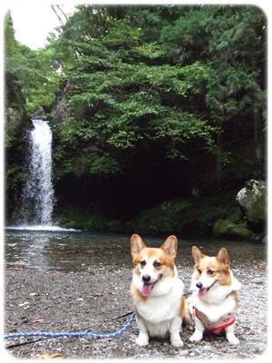 ちょろっと箱根と、水汲みのハシゴ≪←また、水汲み(゚m゚*)プッ≫【22.9.14】 NO5